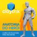 Anatomia do Herói